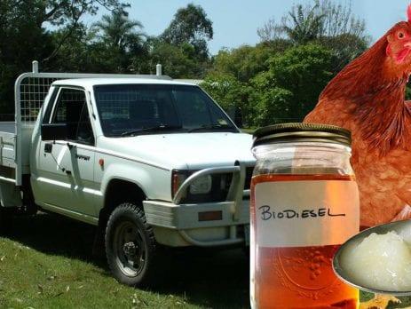 biodiesel in mitsubishi